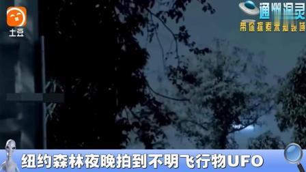纽约森林夜晚拍到不明飞行物UFO