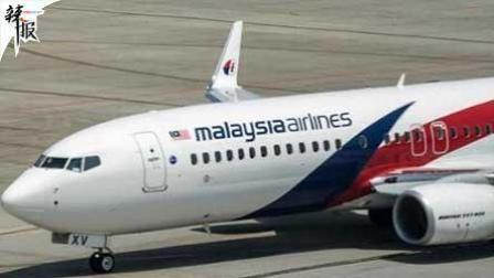 英专家称发现MH370在柬埔寨密林 机身似有缺口