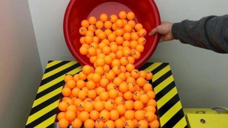 1000个乒乓球倒入粉碎机会是什么场面? 网友: 隔着屏幕听饿了!