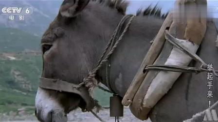 《举起手来》: 猪骑士的笨蛋部下们, 太好笑了, 真是看一次笑一次!