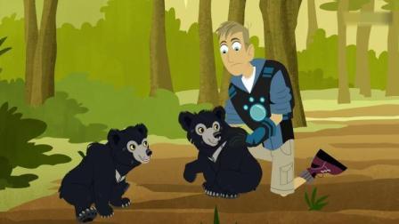 动物兄弟:马拉带动物兄弟去看懒熊,却只见到小熊崽!