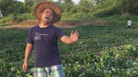 农民叔叔唱一首《好人好梦》, 唱得非常好听我已听醉了
