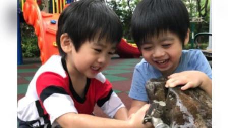 林志颖的双胞胎儿子长大了 简直是两个翻版林志颖