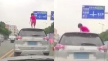 """车流中女童爬上车顶""""骑马"""" 交警:来喝咖啡"""