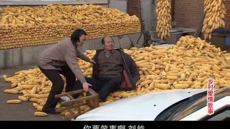 刘能让玉田把新轿车开进广坤家院里,可把广坤吓的躺在玉米地上了