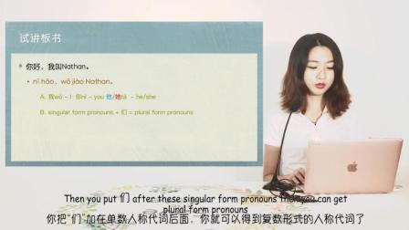 汉办国际对外汉语教师资格证培训初级中文试讲示范