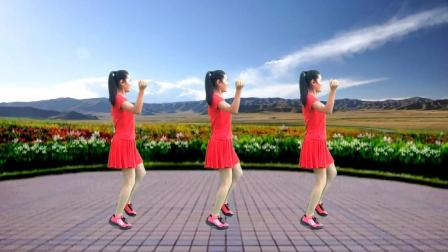 舞韵年华广场舞《在希望的田野上》