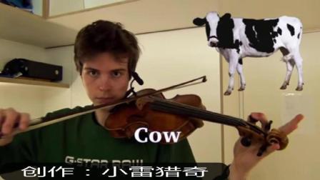 动物在小提琴上发出声音, 太牛了