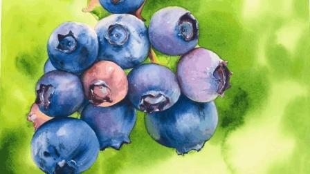 如何用水彩画一个垂涎欲滴的蓝莓