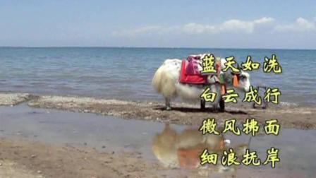 青海甘肃自驾游(10)沿着南线公路欣赏大美青海湖