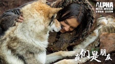 """《阿尔法: 狼伴归途》正片片段曝光""""阿尔法""""双重寓意"""