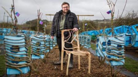 地里还能种出椅子, 一把能卖4万, 农民要种它早发了!