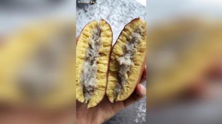 南瓜包芋泥铜锣烧贝果红豆烧果子