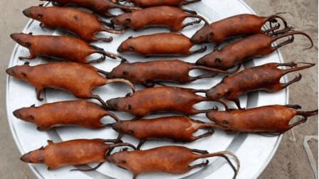 越南真的家家户户吃老鼠? 这次中国吃货要败了, 看完刷新三观!