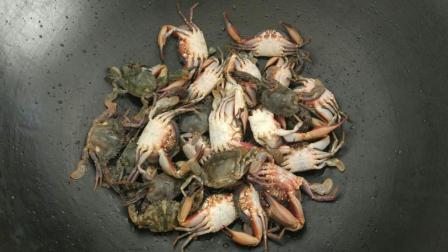 渔村小马: 小伙赶海从来没捡过这么多螃蟹, 就像遇到螃蟹窝了