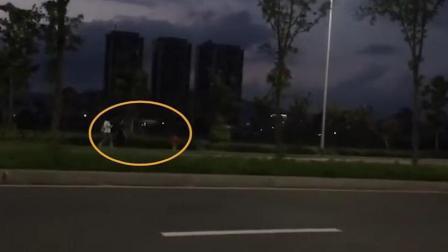 4岁男童黑夜独自回家 热心路人下车全程护送