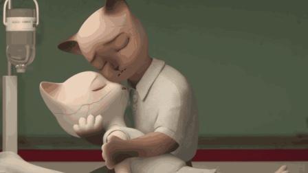 小猫得了传染病, 猫爸爸却甘心被传染, 一部看哭众人的短片!
