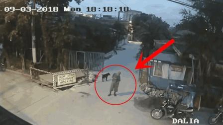 老人被碾压身亡, 监控还原全过程, 家人看完视频愤怒了!