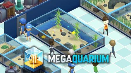 我的小型水族馆开业了! | Megaquarium #1