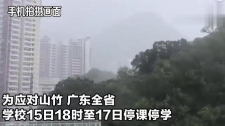 """强台风""""山竹""""登陆! 实拍: 汕尾现14级大风 汽车吹出8米远"""
