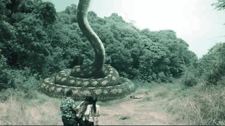 大蛇—电影—视频高清在线观看-优酷1