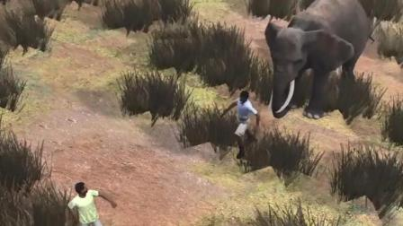 男子野外捉大象反被大象压死了技术不到位