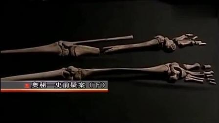 七千年前16岁少女尸骨恐怖残忍, 考古专家称全世