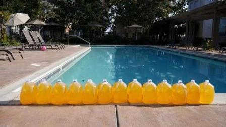 你还敢去泳池游泳吗? 看看里面究竟有多少尿, 隔着屏幕都吓到了