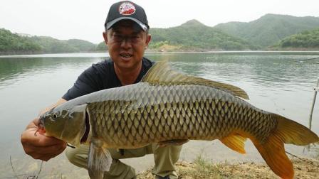 《游钓中国4》第16集 岸钓第一窝点 意料外的收获