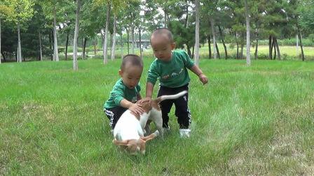 家庭记录之睿恩、睿泽1岁4个月成长记录小视频_20180918