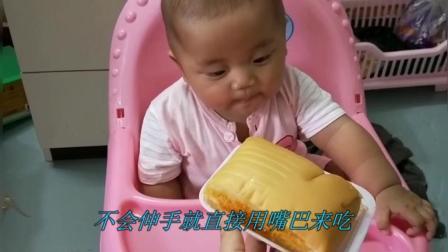 宝宝被妈妈拿着面包诱惑, 这是亲妈不