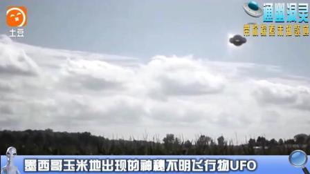墨西哥玉米地出现的神秘不明飞行物UFO