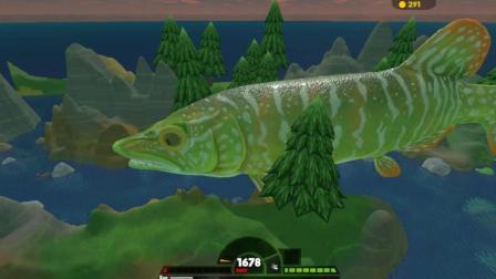 海底大猎杀 人类不插手鱼类的生活, 你们才会发生什么事
