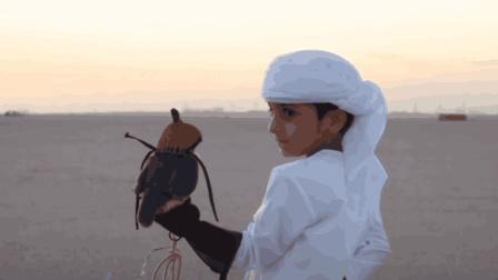 世界上最贵的宠物, 据说只有中东石油土豪才养得起, 你见过吗?