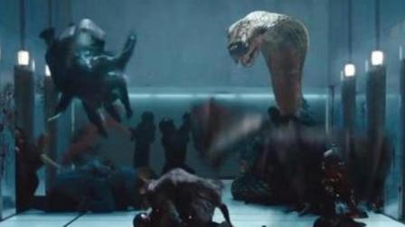 5分钟看完惊悚片《林中小屋》, 未知的丛林之下鬼魂怪兽大集合!