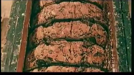 中国考古史上的首次发现, 奇异的四层棺 开棺瞬