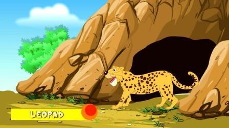 动物奇观 豹子 Leopard