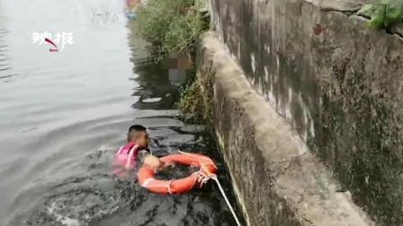 """女子掉入河中 紧抓岸边""""救命草"""""""
