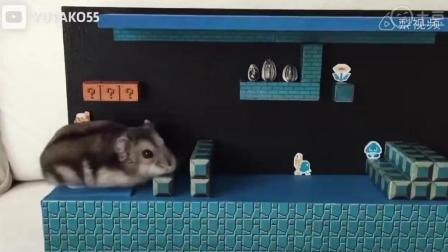 仓鼠版超级马里奥, 布景音效给满分