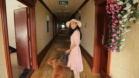 小夫妻房车穷游中国 为省钱一个月住一次酒店 洗了满房间的衣服