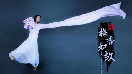 【逍遥舞境】原创水袖古典舞《如懿传—梅香如故》
