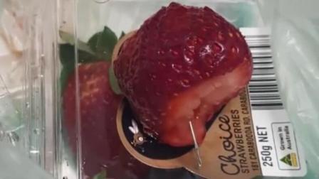 趣事3000 草莓里藏针?澳大利亚人遇到缺德事