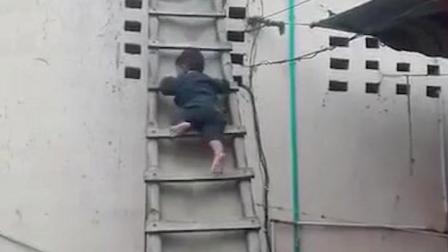 没人看护国外小屁孩还敢爬梯子, 心里还真捏把汗