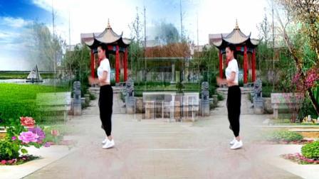 舞蝶广场舞《玩腻》网红24步