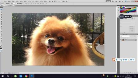 Photoshop, PS教程教学, 调整边缘抠图的方法
