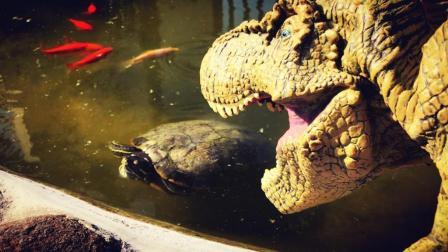 霸王龙企图抓住小乌龟