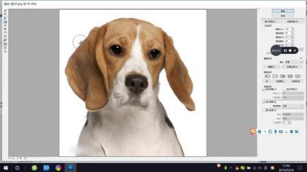 Photoshop, PS教程教学, 液化滤镜使用教程