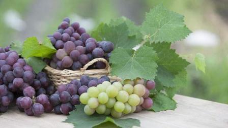 葡萄的营养价值高! 但吃过葡萄后这三种食物最好不要吃, 谨记