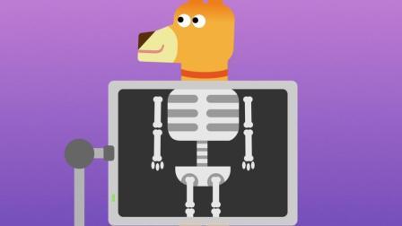 关于骨头那些事-了解你的身体