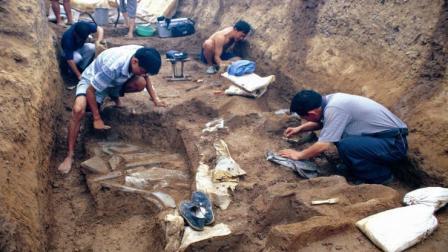 揭秘: 为何诸多历代古墓都是盗墓贼先行发现, 而